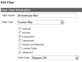 galowercasefilter Google Analytics 101: Some Basic Setup Tips